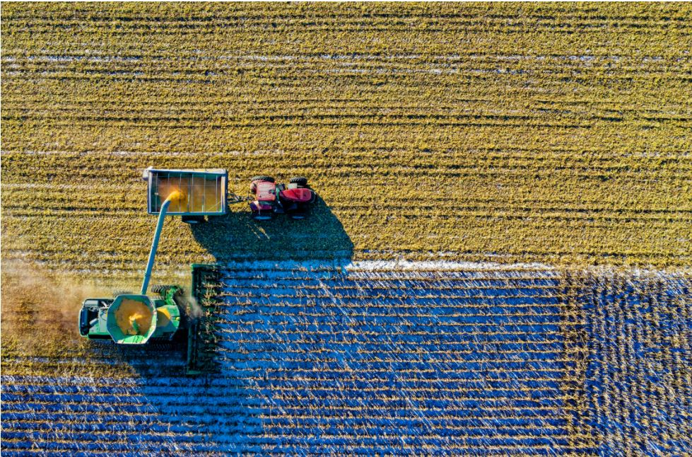The issues with climate change & future food yields