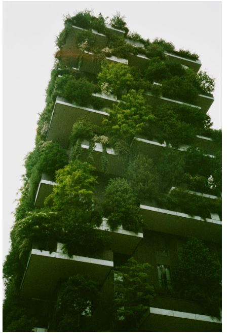 The sustainable design that you need to know!