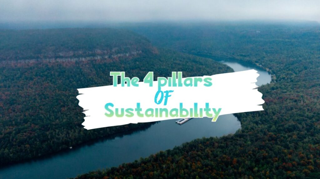 The 4 pillars of sustainability that you need to know